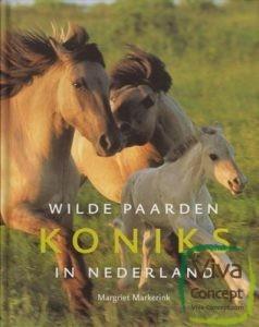 wilde_koniks_paarden_in_nederland