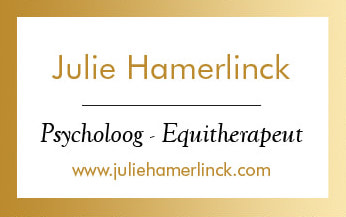 Julie Hamerlinck